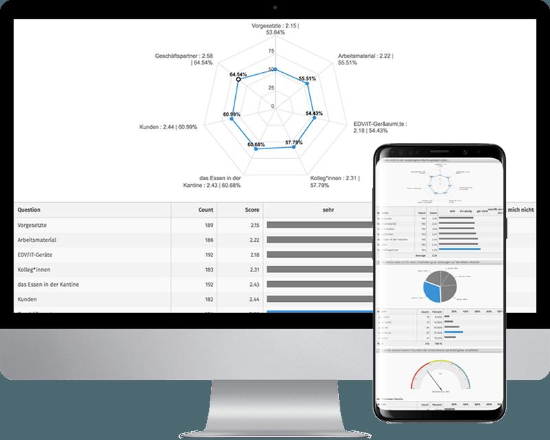 standardauswertung online umfrage