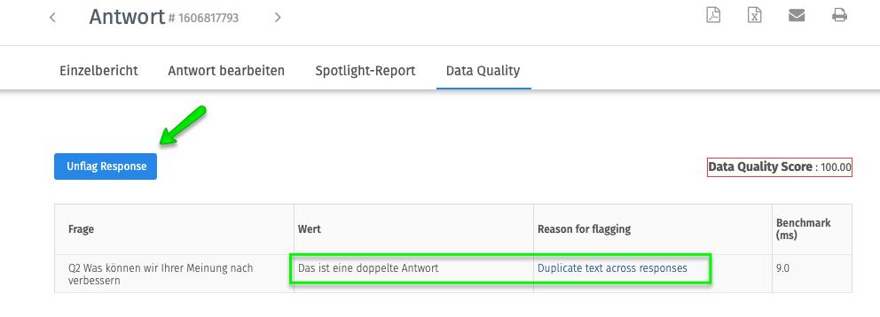 Datenqualität bei Online Umfragen Detail