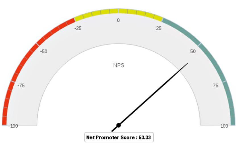NPS Meter