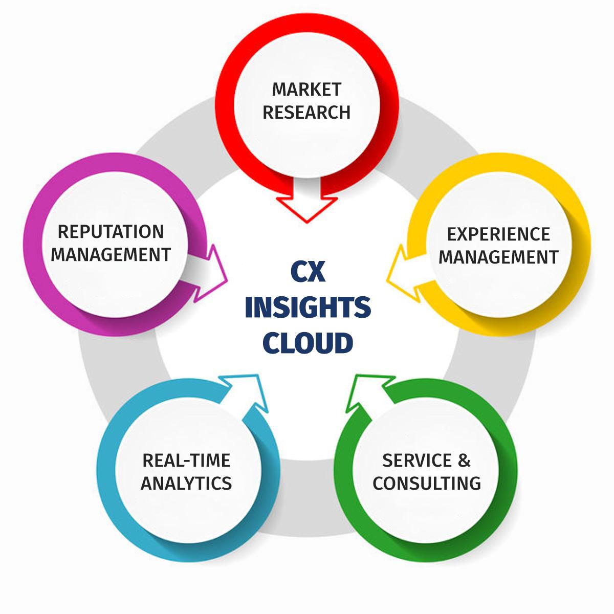 CX Insights Cloud Schema Module
